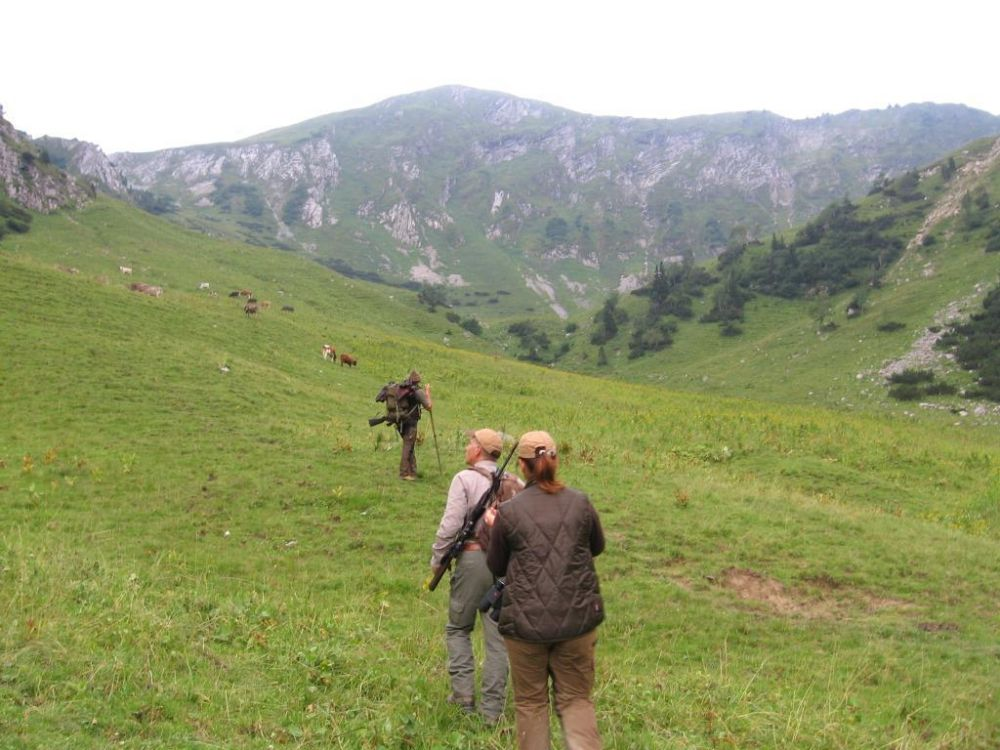 Rumunia (2)