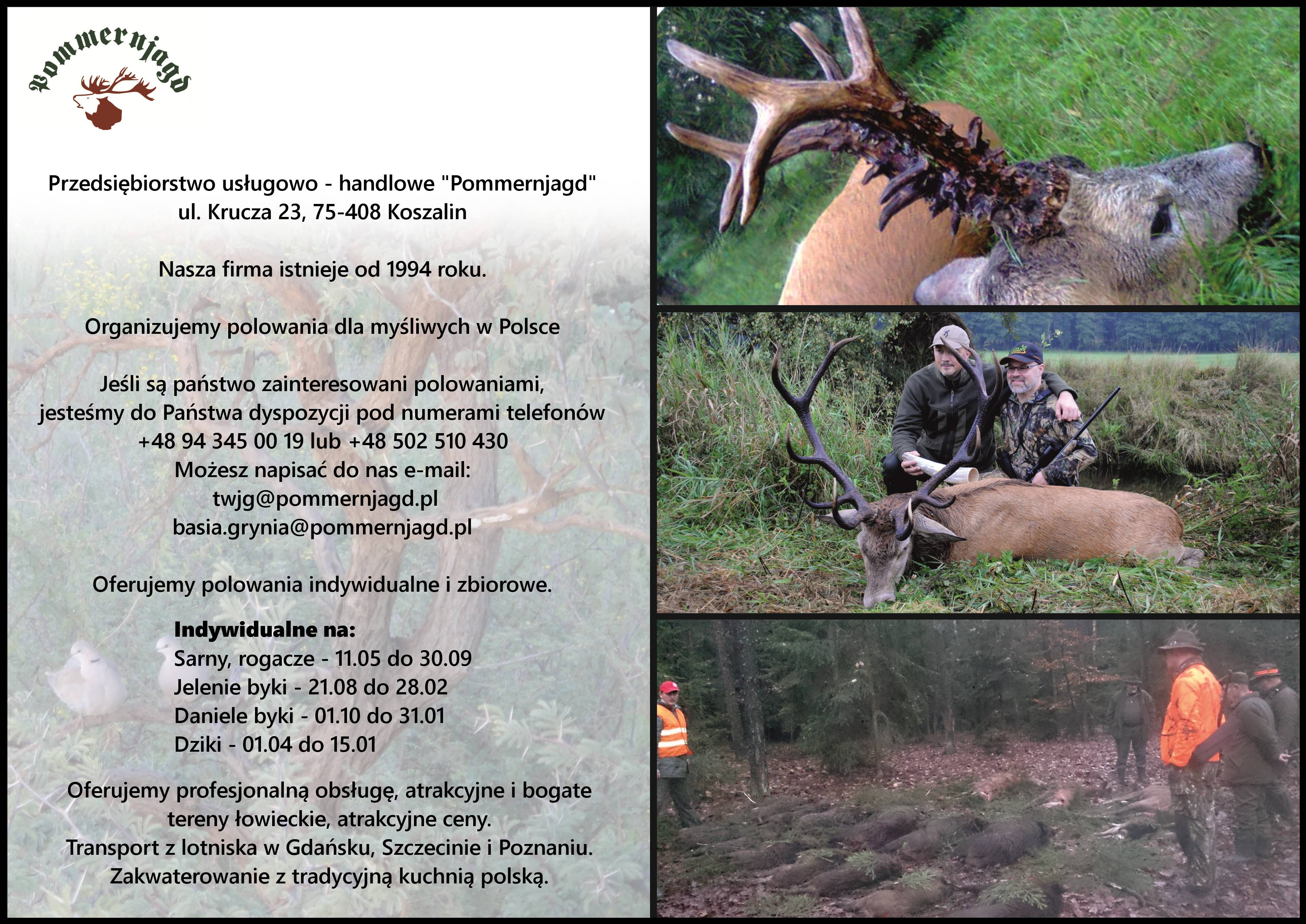 Ulotka - oferta na polowania indywidualne, polowania zbiorowe